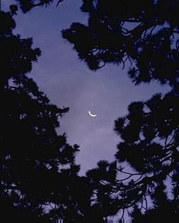 055M_Crescent.jpg