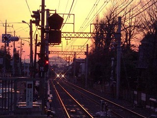 sunset_train.jpg